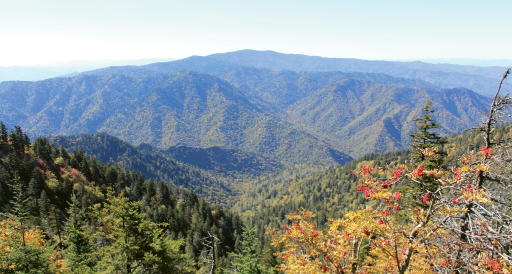 Great Smoky Mountains National Park offers hiking at any level on hundreds of trails.